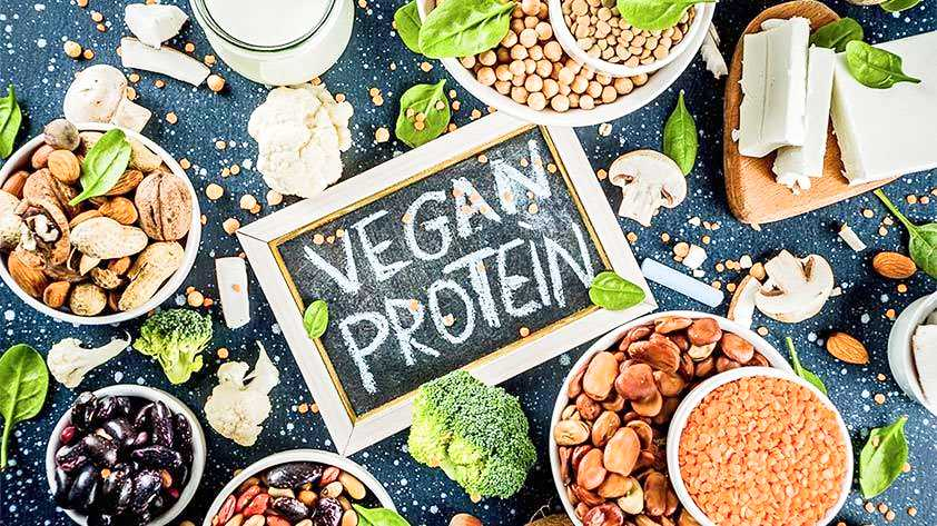 Plant Based Protein 5 Superb Sources to Look Out For Keep Fit Kingdom