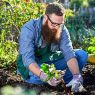 Sustainable Living 101: 5 of the Easiest Foods to Grow in Your Garden!