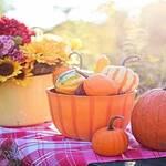 Pumpkin Recipes 7 Scrumptious Dishes Youll Love - Keep Fit Kingdom