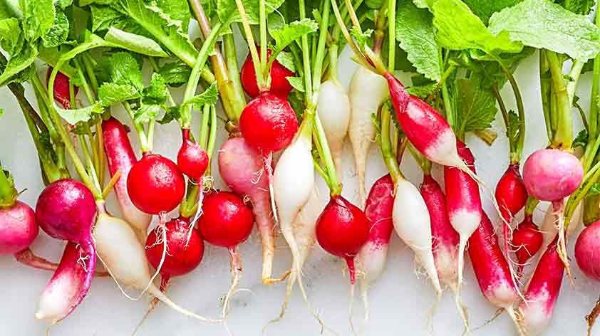 Radish Top 5 Health Benefits - Keep Fit Kingdom