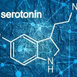 Serotonin 5 More Happy Mood Foods - Keep Fit Kingdom
