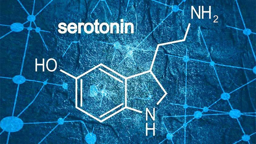Serotonin 5 More Happy Mood Foods - Keep Fit Kingdom