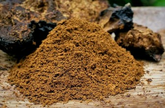 Top 5 Health Benefits of Chaga!