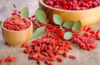 Top 5 Health Benefits of Goji Berries!
