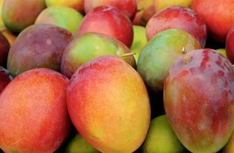Top 5 Health Benefits of Mango!