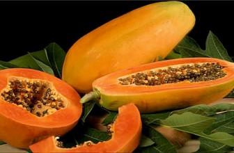 Top 5 Health Benefits of Papaya!