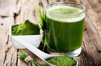Top 5 Health Benefits of Spirulina!