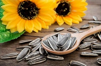 Top 5 Health Benefits of Sunflower Seeds!